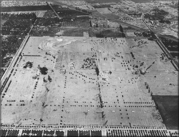 The Construction of Disneyland - Designing Disney